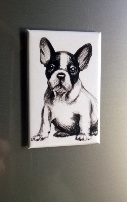 French Bulldogge Magnet eckig